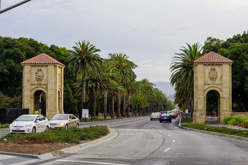 Stanford campus palm drive